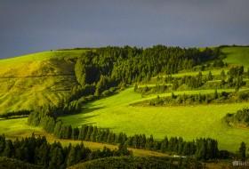 VERDE LUZ POENTE – Ponta Delgada-Ilha de São Miguel-Açores-Portugal