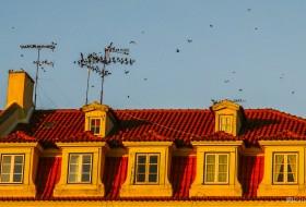 REVOADA POENTE – Lisboa-Portugal