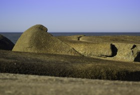 MARINO, EL LEÓN – Punta del Diablo-Uruguay
