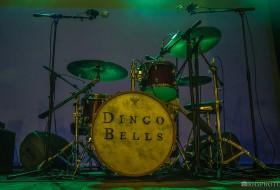 Dingo Bells – CHC Santa Casa 01