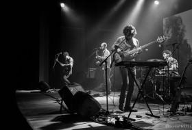 Dingo Bells – CHC Santa Casa 30